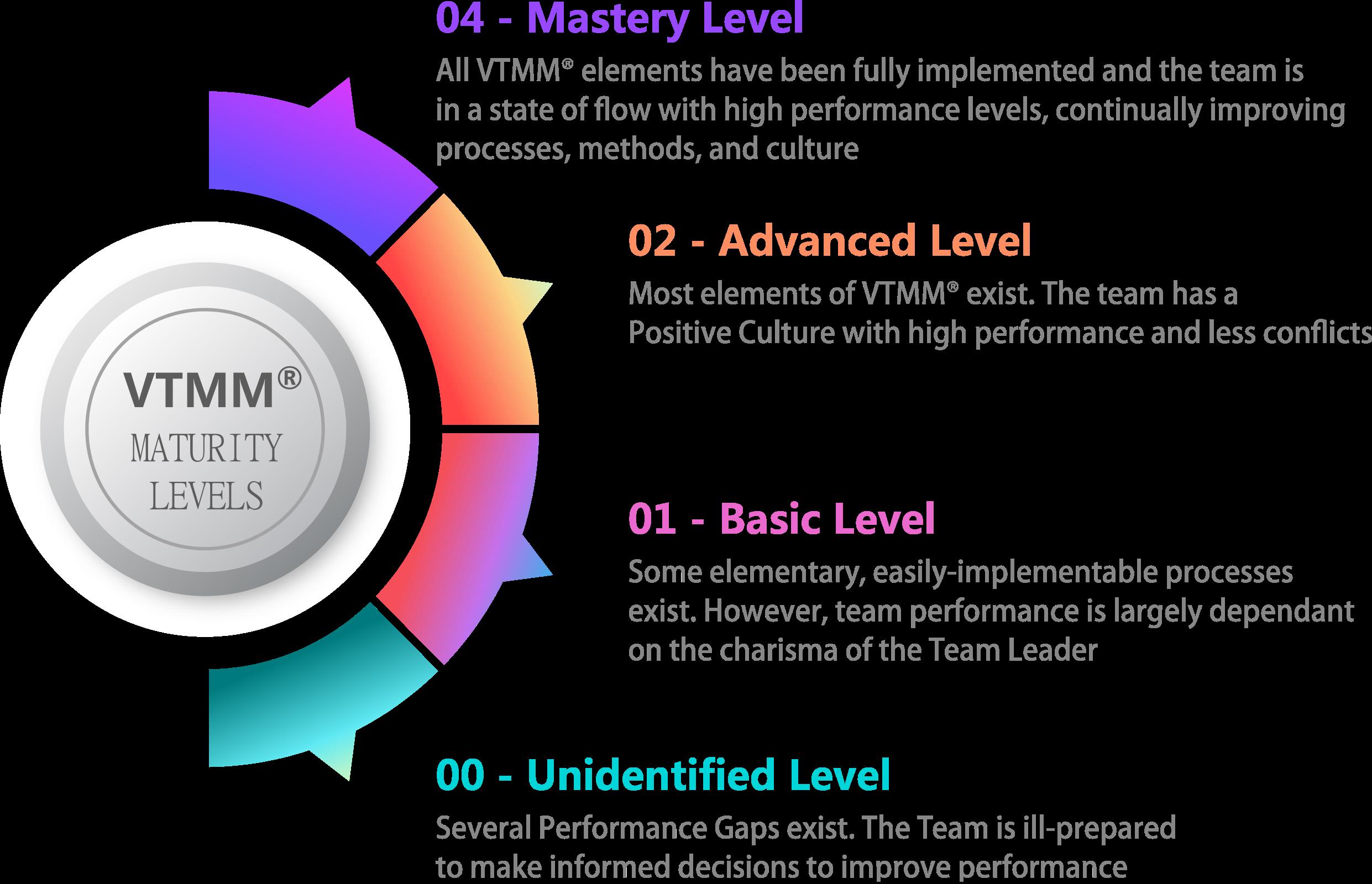 VTMM Maturity Levels
